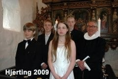 Hjerting_2009