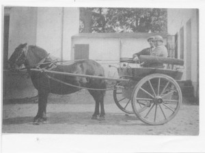 3) Carl Alfred Jonsson og kørehesten Fanny. Det er C.A. bagerst med kasket. passager ubekendt
